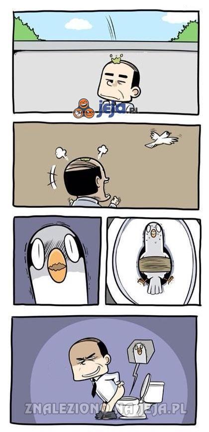 Zemsta na gołębiu