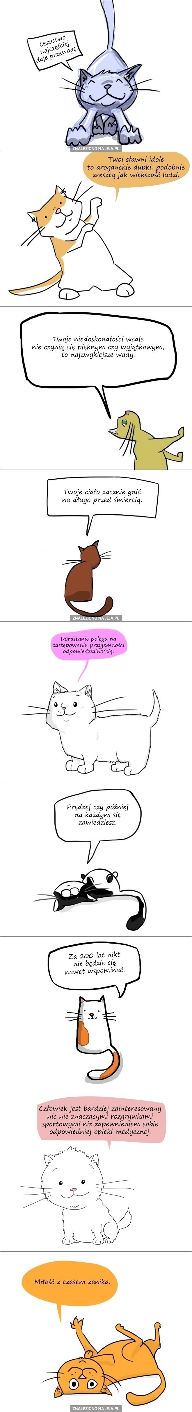 Demotywujące kotki cz. 2