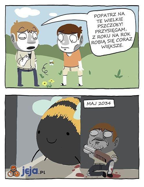 Pszczoły są dziwne
