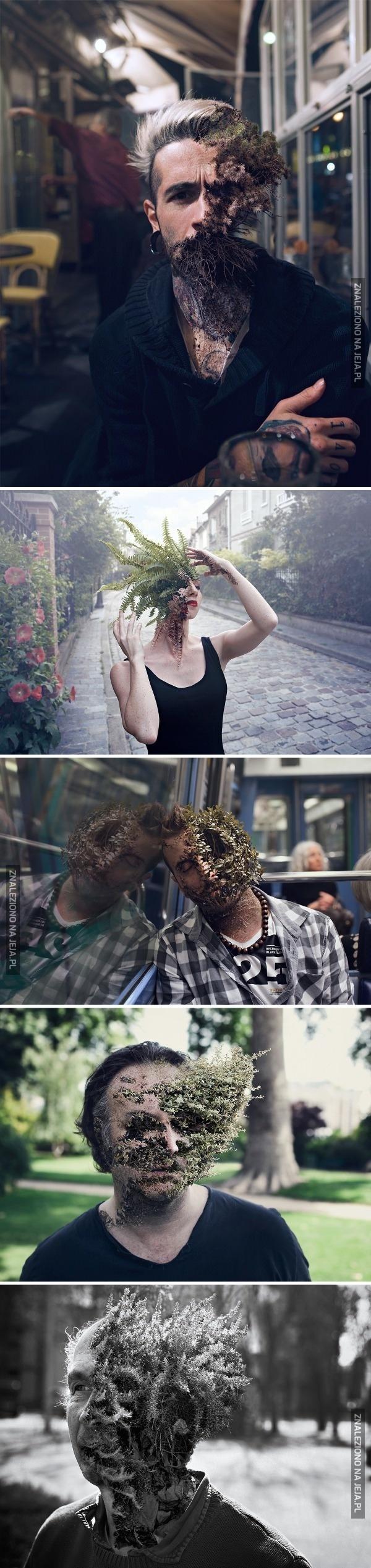 Chodzące rośliny