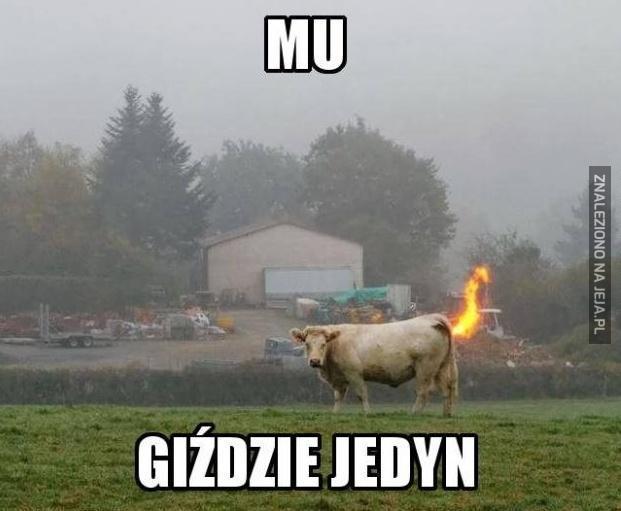 Normalny dzień na Śląsku