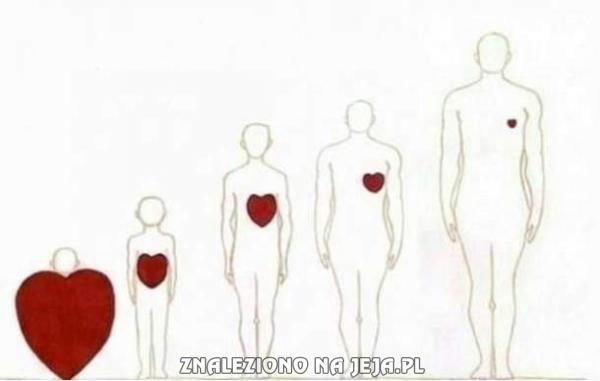 Człowiek większy, a serce coraz mniejsze