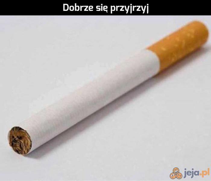 To nie jest zwykły papieros
