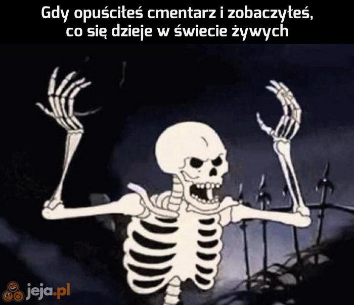 Oby kości nie przesiąkły głupotą