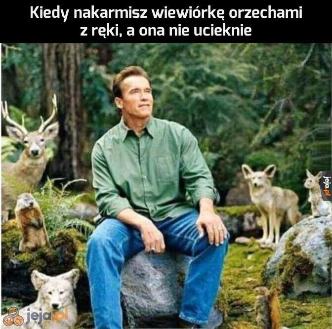 Jednoczę się z naturą
