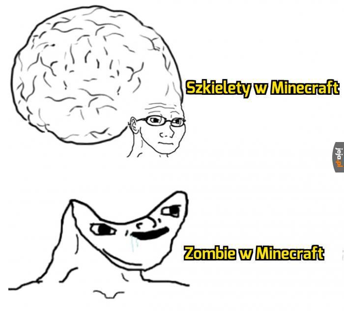 A Ty grasz w Minecrafta?