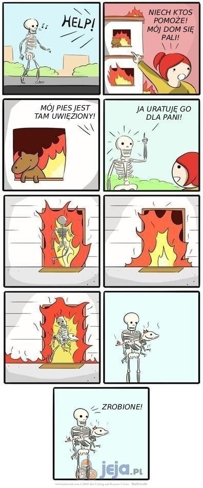 Pies w płonącym domu