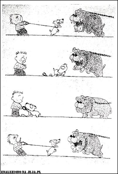 Zacięty pies