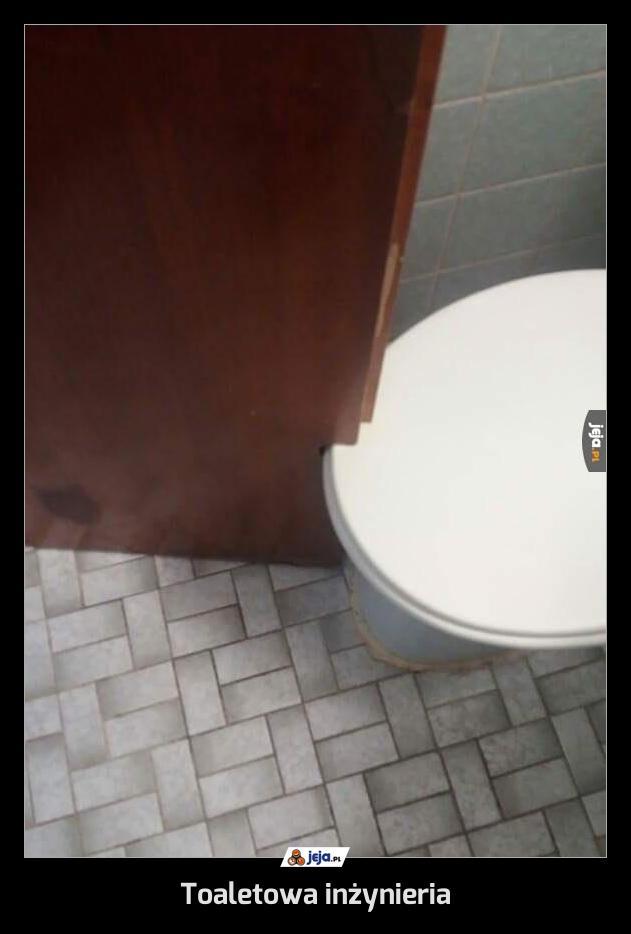 Toaletowa inżynieria