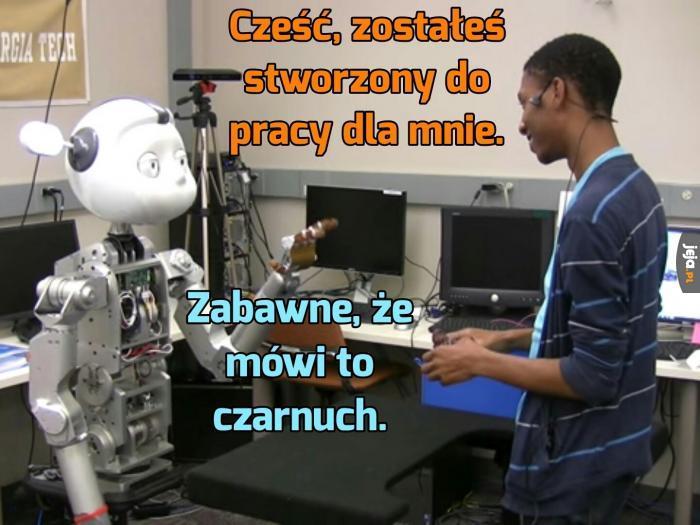 Rasistowski robot