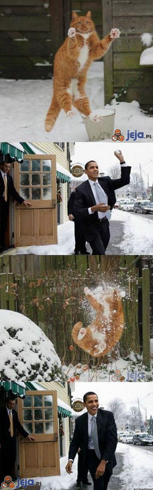 Obama vs kot
