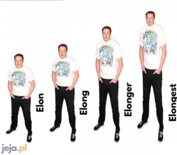 Angielski z Elonem