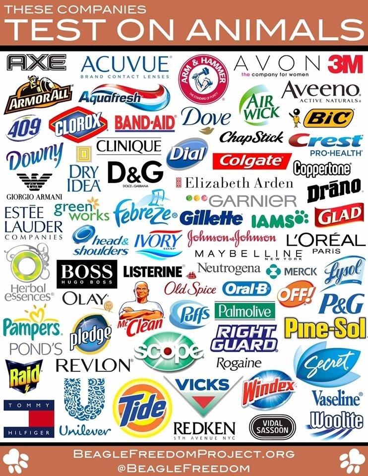Te firmy testują na zwierzętach