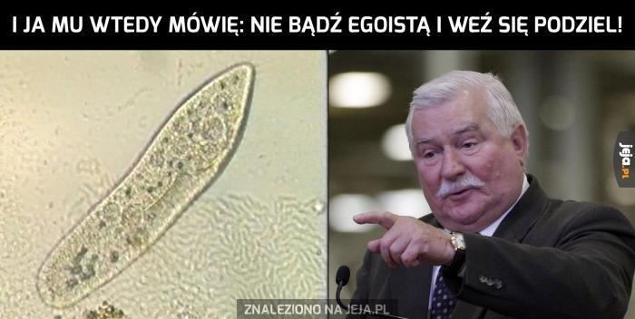 Egoistyczna komórka