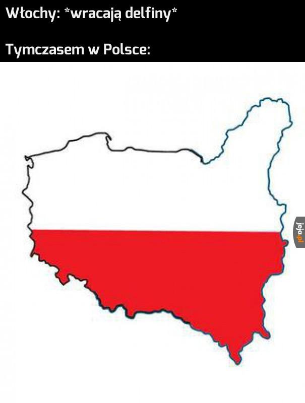 Wreszcie w Polsce szumią Lwowskie drzewa