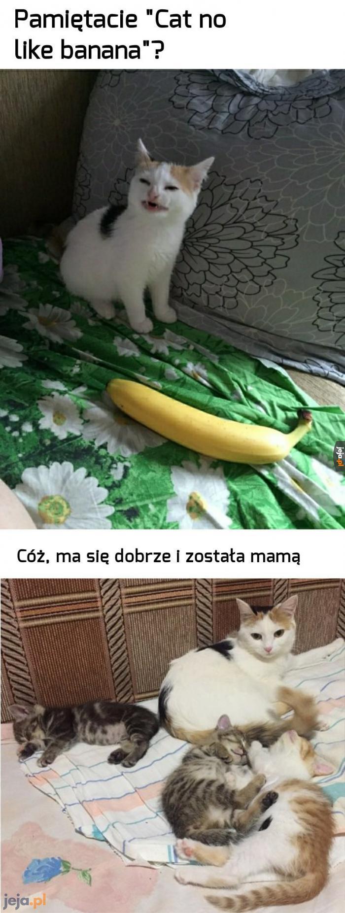 Będzie mogła uczyć swoje dzieci nienawiści do bananów