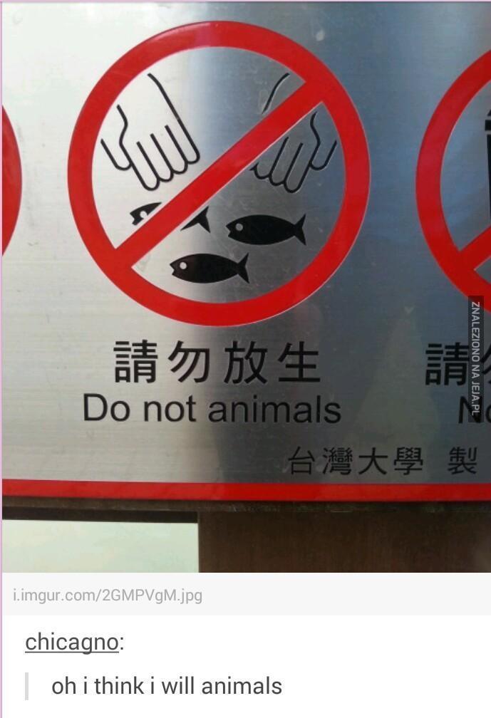 Proszę nie zwierzęta
