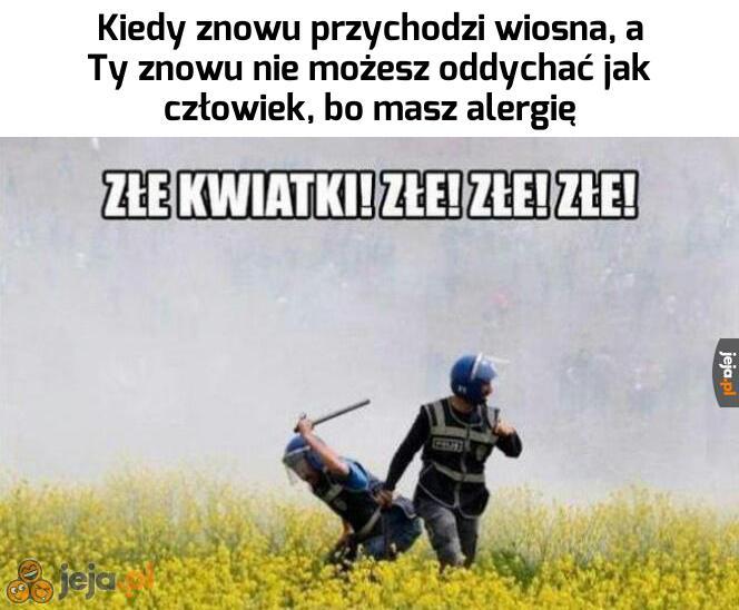 Alergicy, łączmy się!