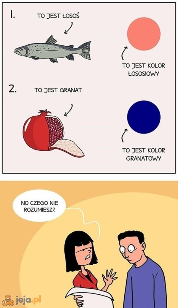 Dlaczego faceci nie rozróżniają kolorów