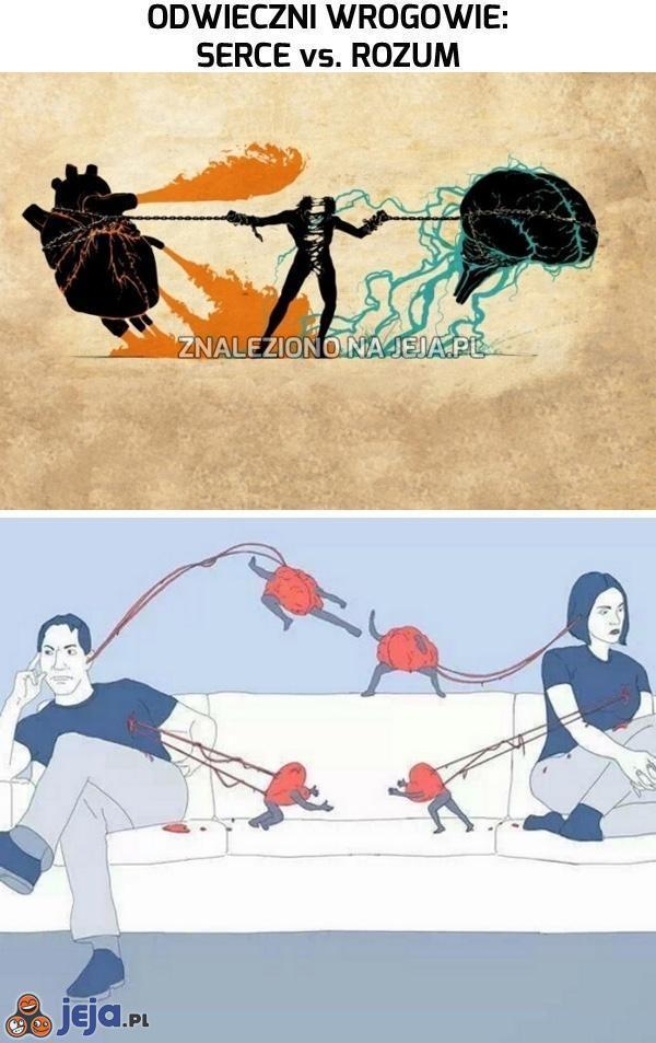 Odwieczni wrogowie: serce vs. rozum