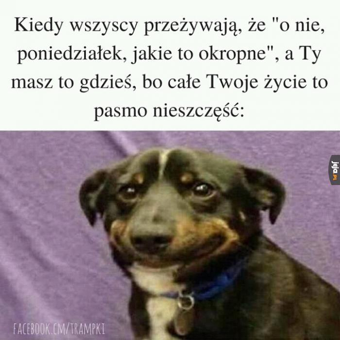 Gdy jeden poniedziałek niczego nie zmienia