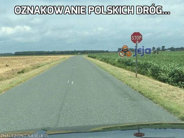 Oznakowanie polskich dróg...
