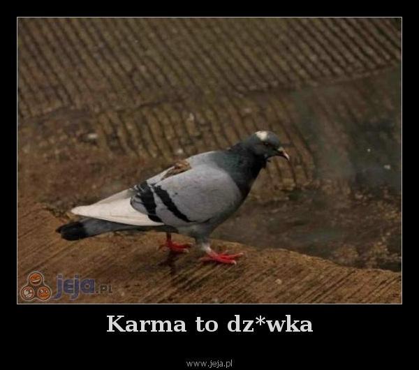 Karma to dz*wka