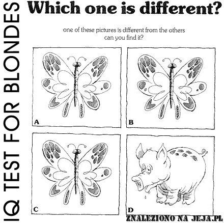 Test IQ - Różnice