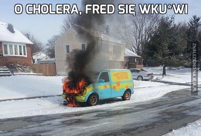 O cholera, Fred się wku*wi