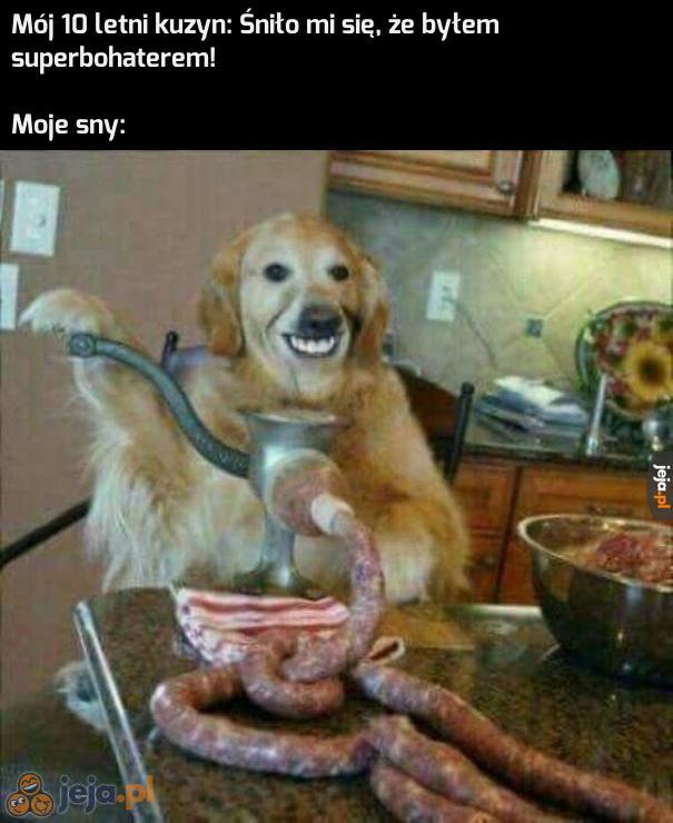 Pies robiący kiełbasy, tak to on