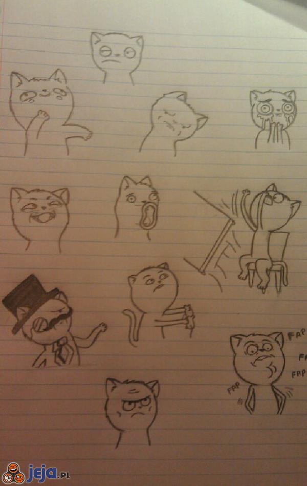 Memy w wydaniu kotów