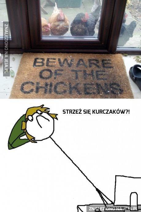 Strzeż się kurczaków!