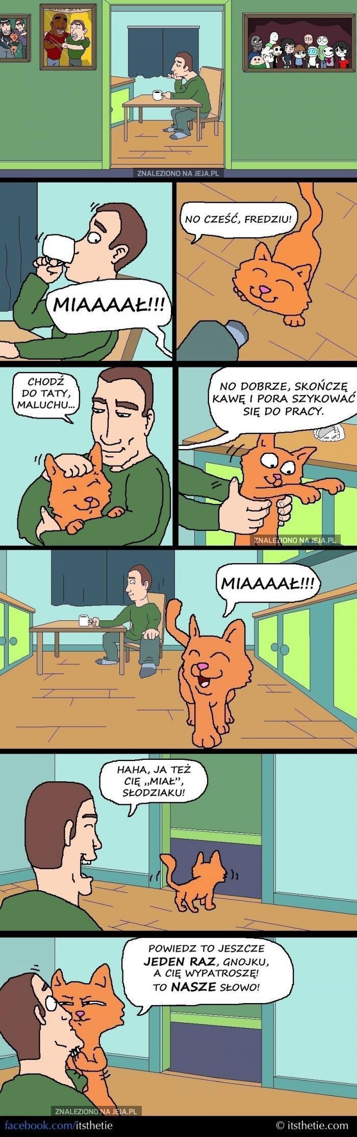 Kotki cenią sobie piękno swojego języka