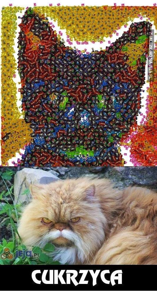 Kot z cukierków