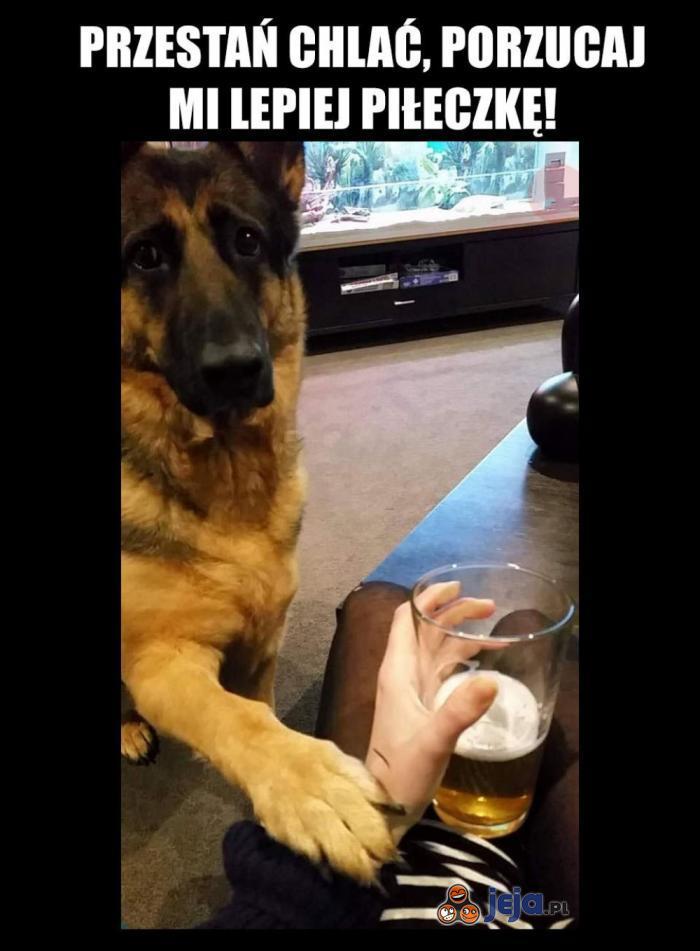 Starczy już tego alkoholu