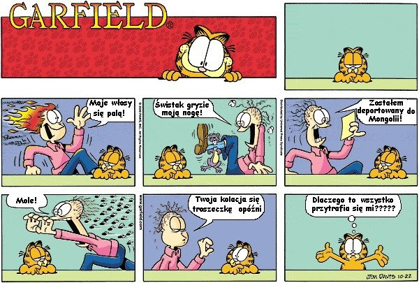Garfield i kolacja