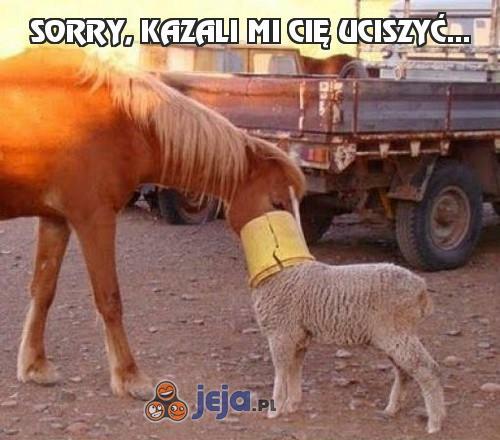 Sorry, kazali mi cię uciszyć...