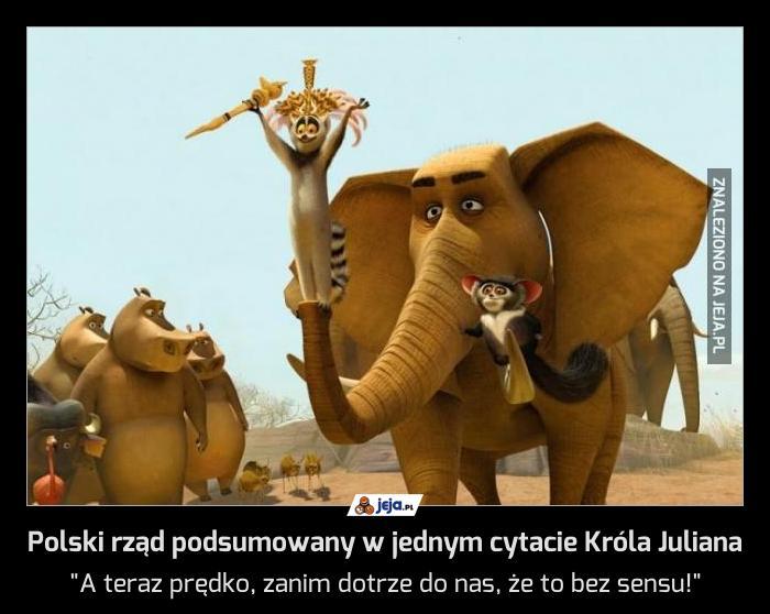 Polski rząd podsumowany w jednym cytacie Króla Juliana
