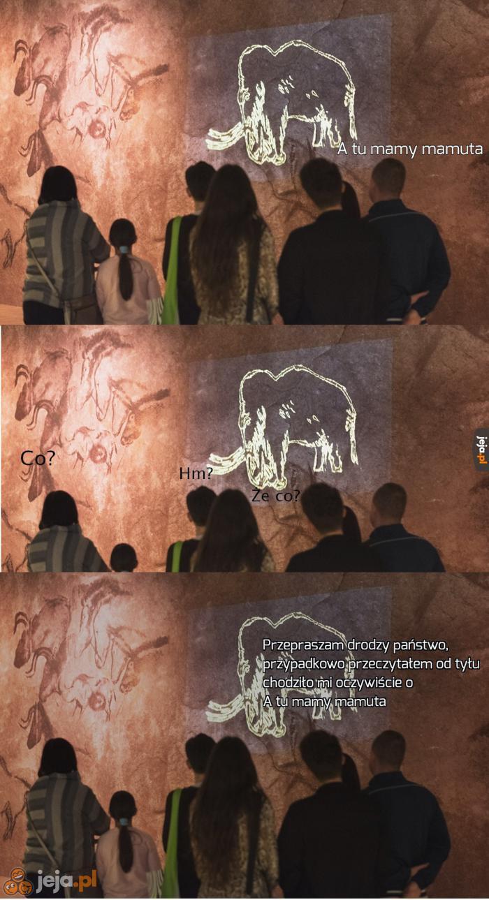 A tu mamy mamuta