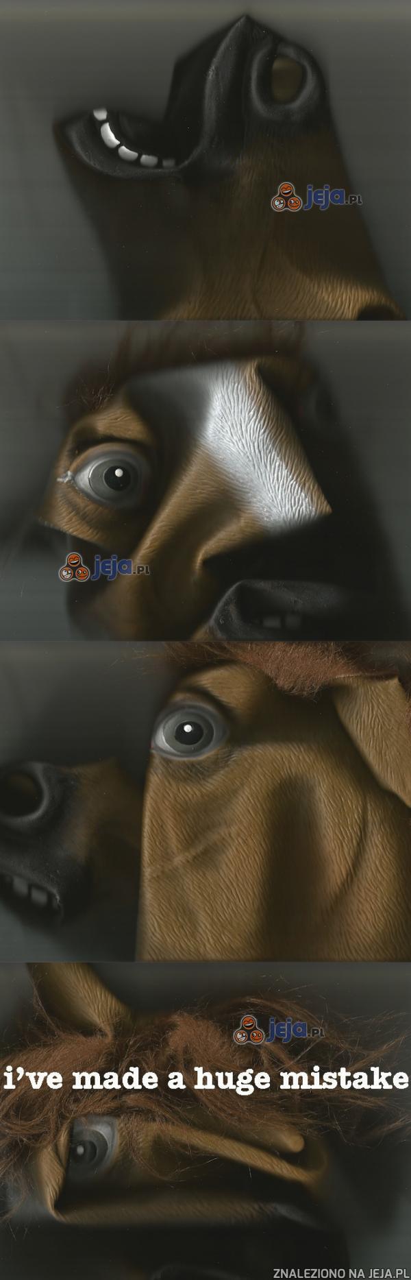 Głowa konia - trwa skanowanie...