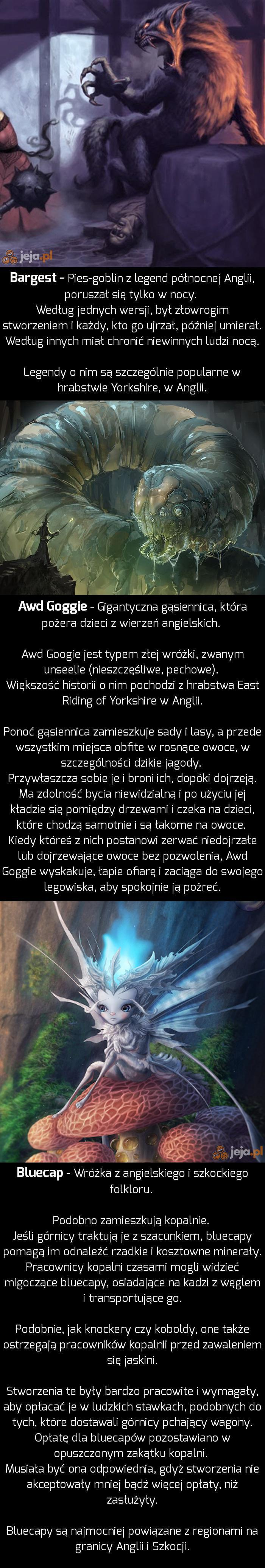 Bestiariusz Angielski