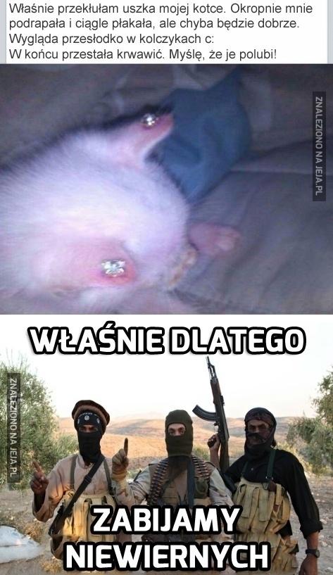 Powstrzymaj ISIS, przestań być głupi!