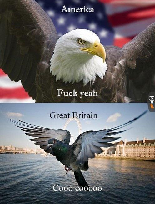 Ameryka vs Wielka Brytania