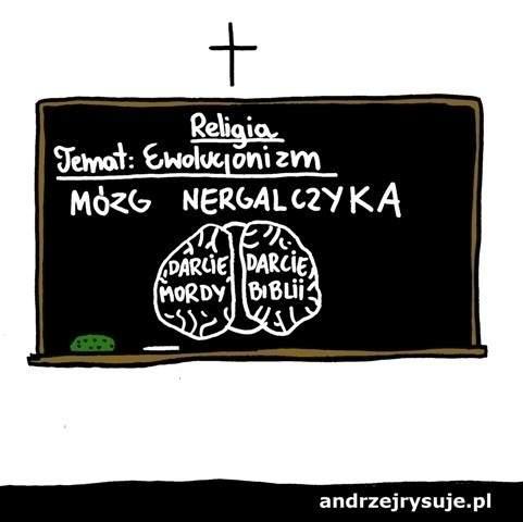 Mózg negralczyka