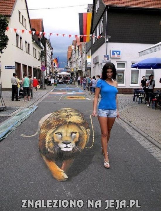 Spacerek z lwem