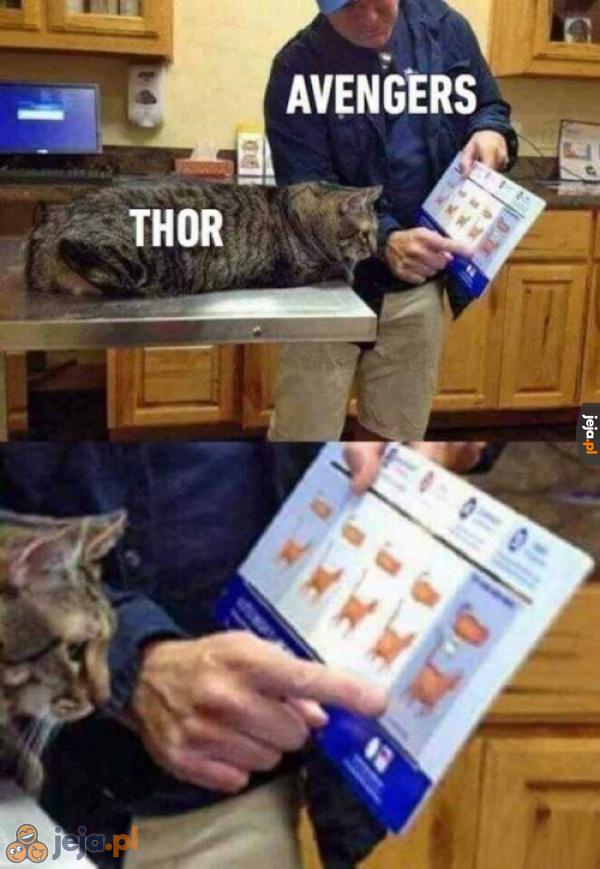 Sorry Thor, ale jesteś gruby