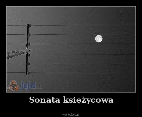 Sonata księżycowa