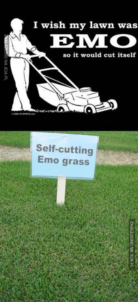 Chciałbym, żeby mój trawnik był emo