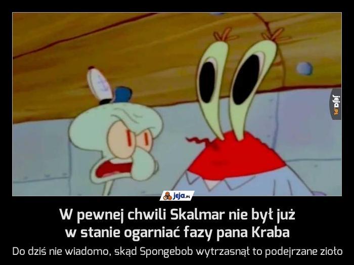 W pewnej chwili Skalmar nie był już w stanie ogarniać fazy pana Kraba