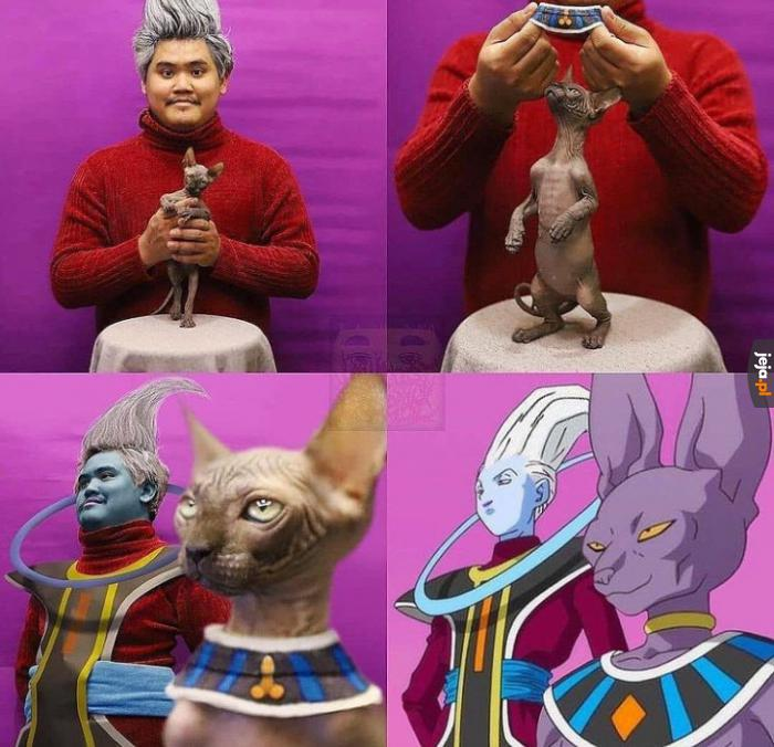 Mistrz cosplayu w gotowości